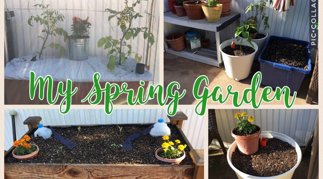 Hopelessly Inept Gardener